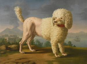 neapolitan_school_portrait_of_codina_believed_to_be_lady_hamiltons_poodle